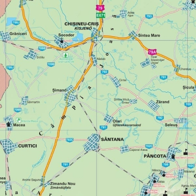 Harta Judetului Arad 100 X 70 Cm Sipci Plastic Bnb