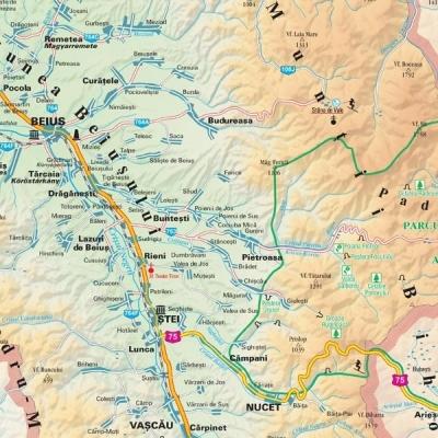 Harta Judetului Bihor 70 X 100 Cm Sipci Plastic Bnb