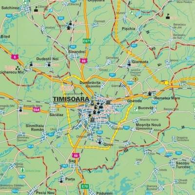 Harta Judetului Timis 100 X 70 Cm Sipci Plastic Bnb