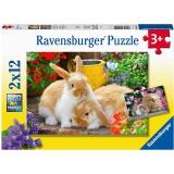Puzzle Porcusor De Guinea Si Iepuras, 2X12 Piese Ravensburger