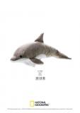 Jucarie Plus Venturelli - National Geographic Delfin 42 Cm - AV770732