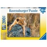 Puzzle Micul Leu, 200 Piese Ravensburger
