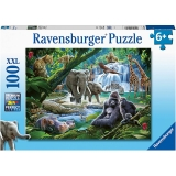 Puzzle Animale Din Jungla, 100 Piese Ravensburger