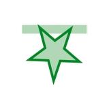 Stea Monocolora Verde  Big Party