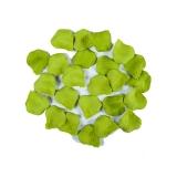 Petale Lux Verde Deschis 100 buc/Set  Big Party