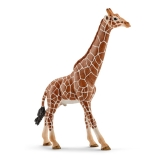 Figurina Schleich Girafa. Mascul - 14749