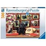 Puzzle Catel Loial, 500 Piese Ravensburger