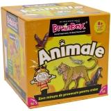 Joc educativ Animale Brain Box