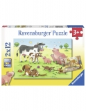 Puzzle Familii Animale, 2X12 Piese Ravensburger