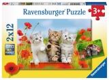 Puzzle Aventura Pisicutelor, 2X12 Piese Ravensburger