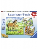 Puzzle Animale Si Pui, 3X49 Piese Ravensburger