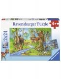 Puzzle Animale Padure, 2X24 Piese Ravensburger