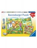 Puzzle Animale De Curte, 3X49 Piese Ravensburger