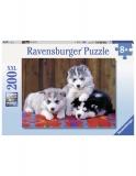 Puzzle Pui De Huskie, 200 Piese Ravensburger