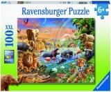 Puzzle Izvor In Jungla, 100 Piese Ravensburger