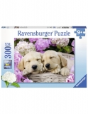 Puzzle Catei In Patura, 300 Piese Ravensburger