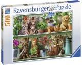 Puzzle Pisici Pe Raft, 500 Piese Ravensburger