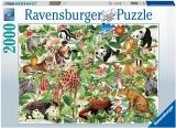 Puzzle Jungla, 2000 Piese Ravensburger
