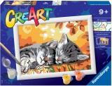 Pictura Pe Numere - Pisicute Somnoroase Ravensburger