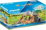 Tarcul Leilor Playmobil