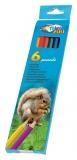 Creioane colorate 6 culori Zoo Centrum