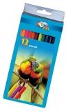 Creioane colorate 12 culori Zoo Centrum