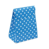 Cutie Saculet Pois Turcoaz 25 buc/Set Big Party