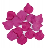Petale fuchsia de lux 100 bucati/set Big Party