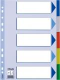 Separator din plastic, PP, A4, 5 buc/set Esselte