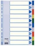 Separator din plastic PP, A4 Maxi 10 buc/set Esselte