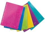 Folie de protectie color WOW cu arici, diverse culori 6 buc/set Leitz