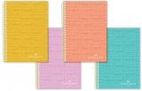 Caiet spira A4, 100 file, dictando, culori pastel Faber-Castell