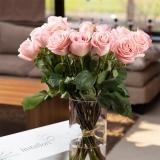 Cutie trandafiri, 11 fire, roz