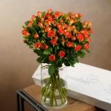 Cutie trandafiri, 11 fire, Spray Roses portocalii
