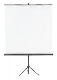 Ecran de proiectie X-tra 200 x 200 cm format 1:1 Franken