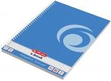 Caiet cu spira A4, 80 file, matematica, perforat, albastru baltic Herlitz