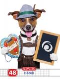 Caiet A5 48 file matematica Cool Dog Herlitz