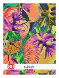 Set 5 caiete A4 80 file dictando Tropical Herlitz