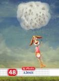Caiet A5 48 file matematica Dream Herlitz