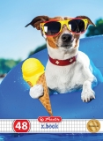 Caiet A5 48 file matematica Cool Dog Premium Herlitz