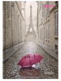 Agenda Herlitz A5 datata zilnica Paris 2019
