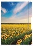 Caiet A5 My.Book Flex patratele 40 file coperta sunflowers cu elastic galben Herlitz