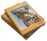 Agenda Herlitz, A6, nedatata, Jaguar