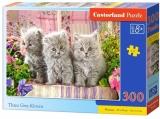 Puzzle 300 piese premium, diverse modele Castorland