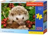 Puzzle 100 piese, diverse modele, Castorland