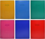 Caiet dictando, A4, 60 file, coperta PP, diverse culori, Nebo