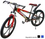Bicicleta, roti 24 inch, diverse modele