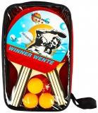 Palete Ping-Pong cu 3 mingi si husa