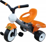 Tricicleta multifunctionala Polesie Didactic