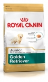 Hrana pentru caini Golden Retriever Junior 12 kg Royal Canin